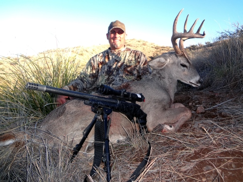 coues deer arizona
