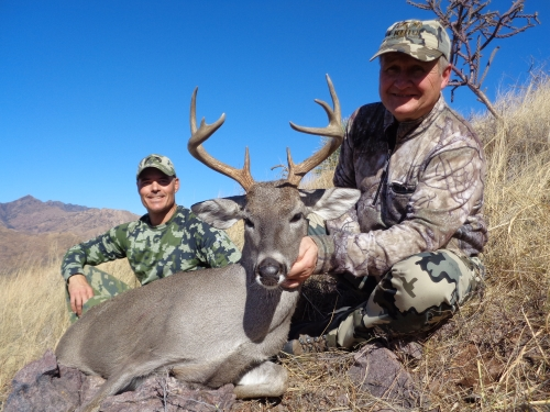 coues deer in arizona guides outfitters hunting