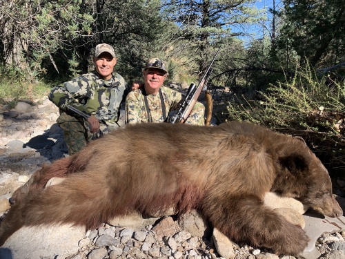 Arizona Guided Bear Hunts Trophy Black Bear Hunting