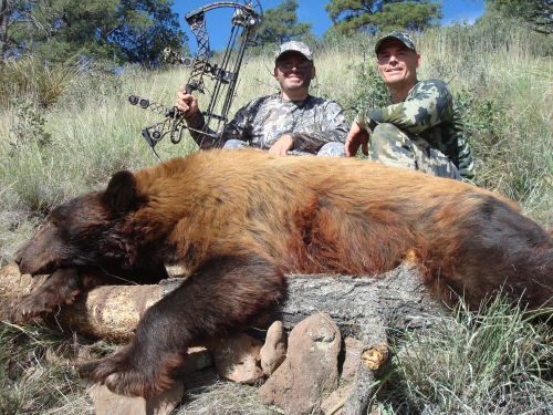 arizona bow hunting for bear