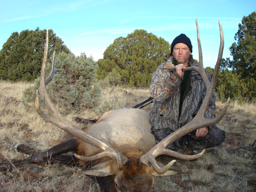 arizona elk hunting guides