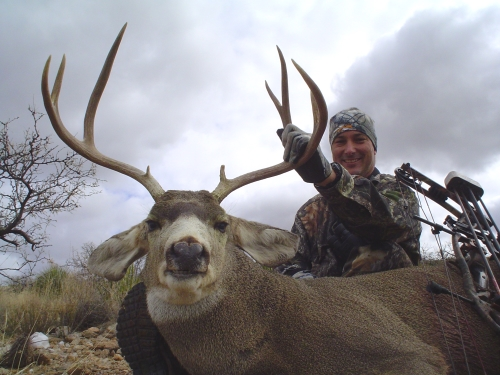 arizona archery mule deer hunting guides outfitters hunts
