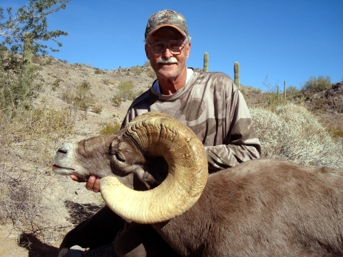 Arizona Desert Bighorn Sheep Hunting