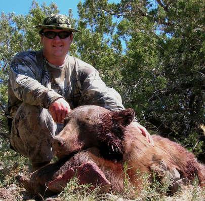 Arizona bear