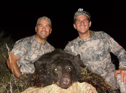 arizona bear hunting guides
