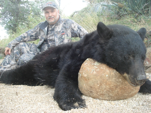 arizona bear hunting