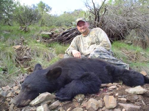 arizona black bear hunting