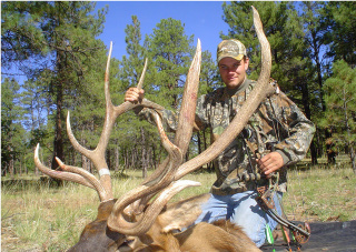 Arizona archery elk non-typical