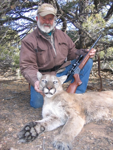 arizona mountain lion guide